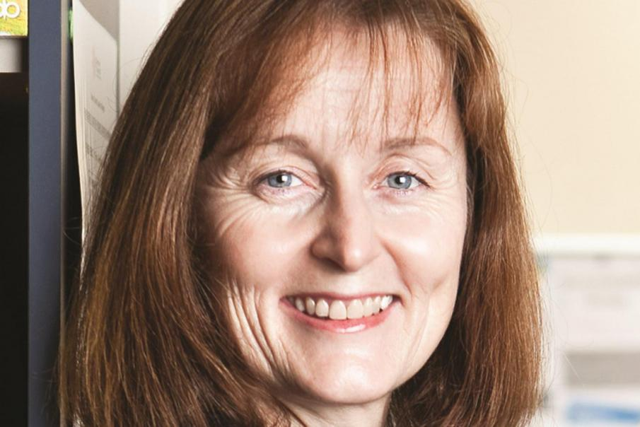 Vinnies appoints new CEO